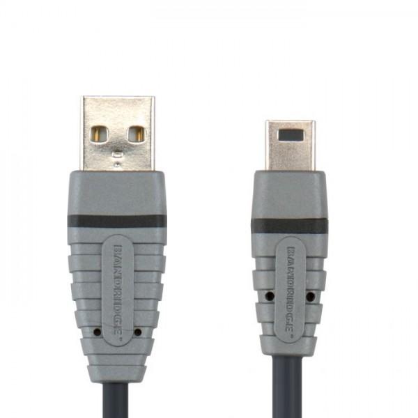 BANDRIDGE COMPUTER BCL4402 USB M - USB Mini M kabel 2m - BANDRIDGE