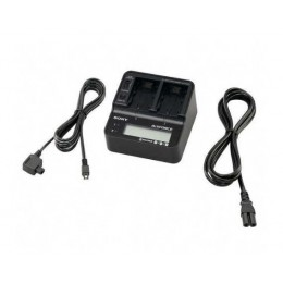CAM AC Adapter SONY AC-VQV10 / Charger L Series