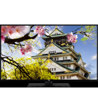 LED TV JVC LT49VU63J